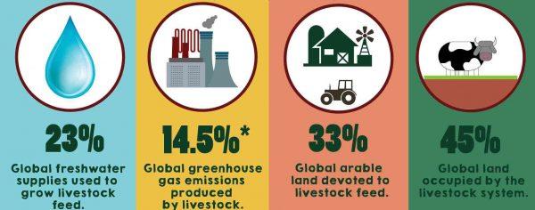 Κτηνοτροφία, Αλιεία και μόλυνση Περιβάλλοντος - Πως συνδέονται?