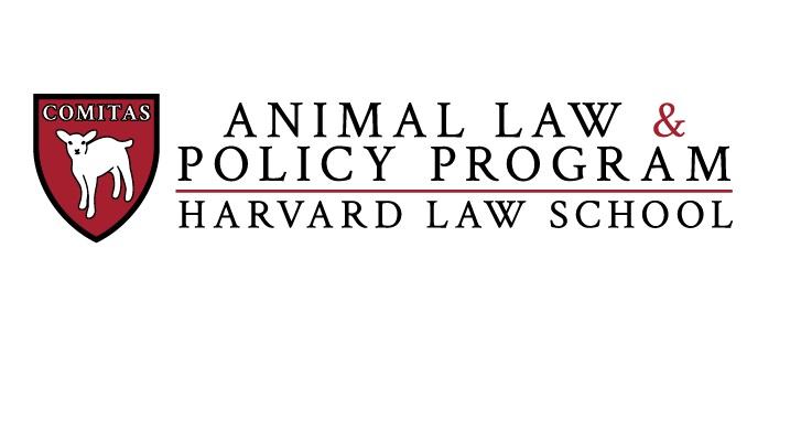 Η Νομική Σχολή του Χάρβαρντ εγκαινιάζει νέο τμήμα για τα δικαιώματα των ζώων