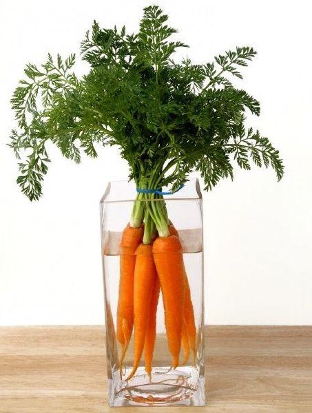 Πέστο με Φύλλα Καρότου vegan συνταγή διατροφική αξία οφέλη υγεία
