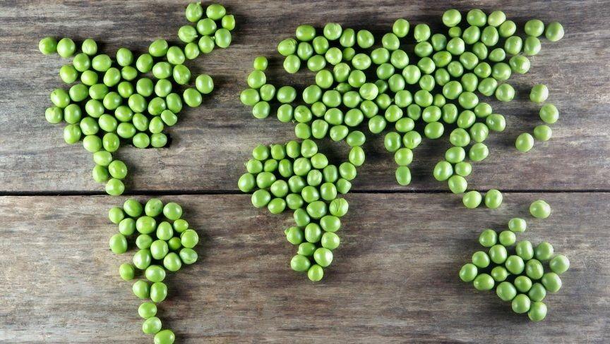 Ένας Vegan κόσμος! Οι συνέπειες εάν η ολόκληρος ο κόσμος αποφάσιζε να γίνει Vegan
