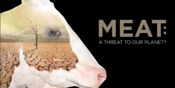 Meat_ A Threat to Our Planet