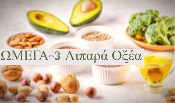 ωμέγα 3 λιπαρά οξέα vegan