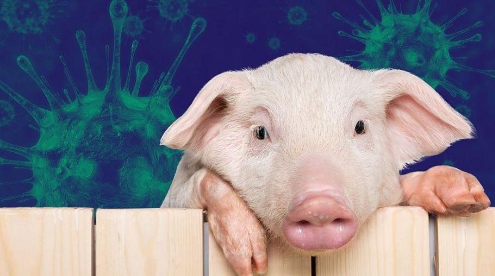 Οι γιατροί προειδοποιούν Επείγουσα Ανάγκη μείωσης της κατανάλωσης κρέατος για την διάσωση του πλανήτη και την δημόσια υγεία