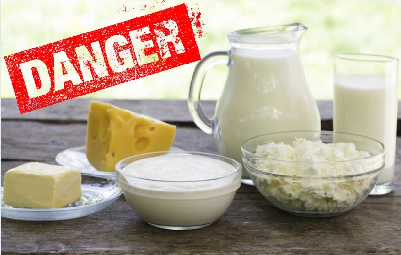 Νέα Επιστημονική Έκθεση _τα Γαλακτοκομικά κάνουν Κακό στο Σώμα Υγεία