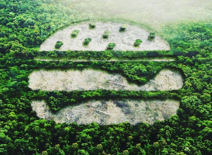 Οι εταιρείες που καταστρέφουν τον Αμαζόνιο και επιδεινώνουν την πανδημία COVID-19