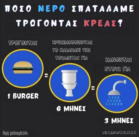 πόσο νερό σπαταλάμε τρώγοντας κρέας veganworld.gr