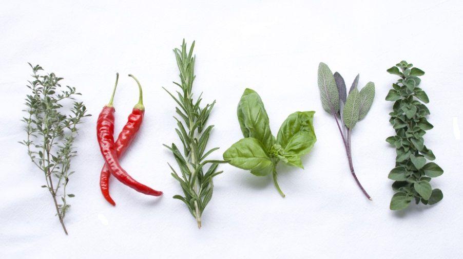 Βοτανική Ιατρική - Aντιμικροβιακά βότανα και μπαχαρικά