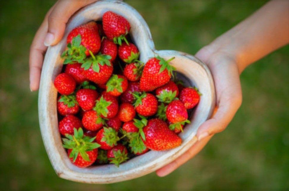 Οι τροφές που πρέπει να αποφεύγετε γιατί εξασθενούν την μνήμη και γερνούν τις αρτηρίες TMAO
