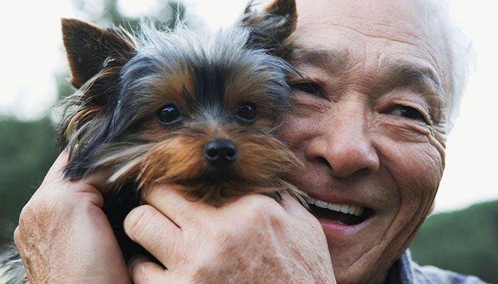Η θεραπευτική δύναμη των ζώων - Ψυχικά Oφέλη - Φυσικά Οφέλη - Κοινωνικά Οφέλη